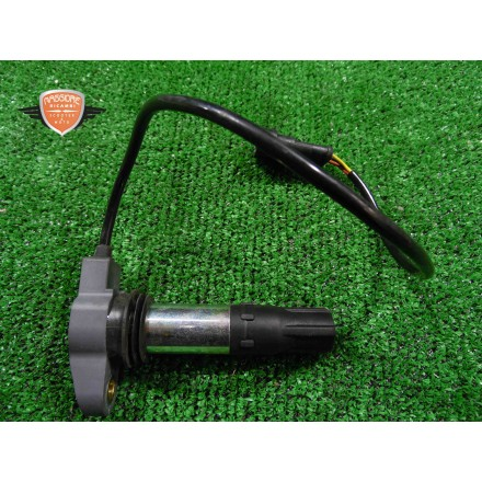 Coil ignition Aprilia Dorsoduro 750 2009 2014