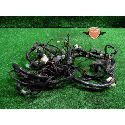 Main wiring harness Piaggio Beverly Cruiser 250 2007 2011